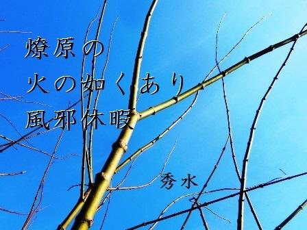 kazekyuka01.jpg