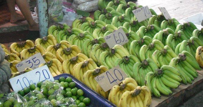 banana zurari