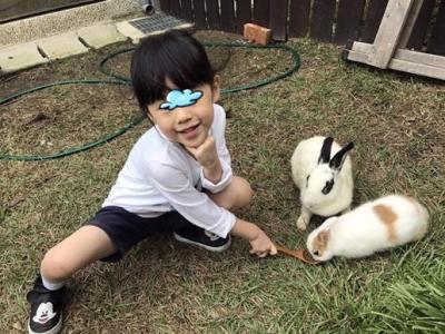 兔子餐廳_161215_0044