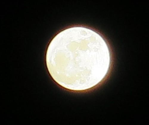 super moon111416 (30)