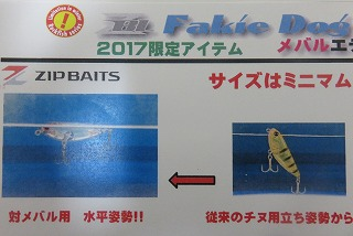 2017_01140006.jpg