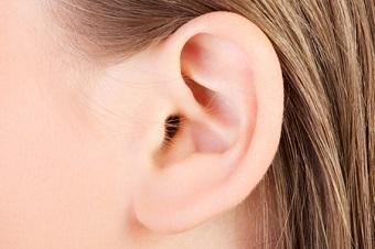 耳の付け根