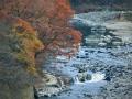広瀬滝遠望