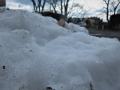 雪の残る森の入口