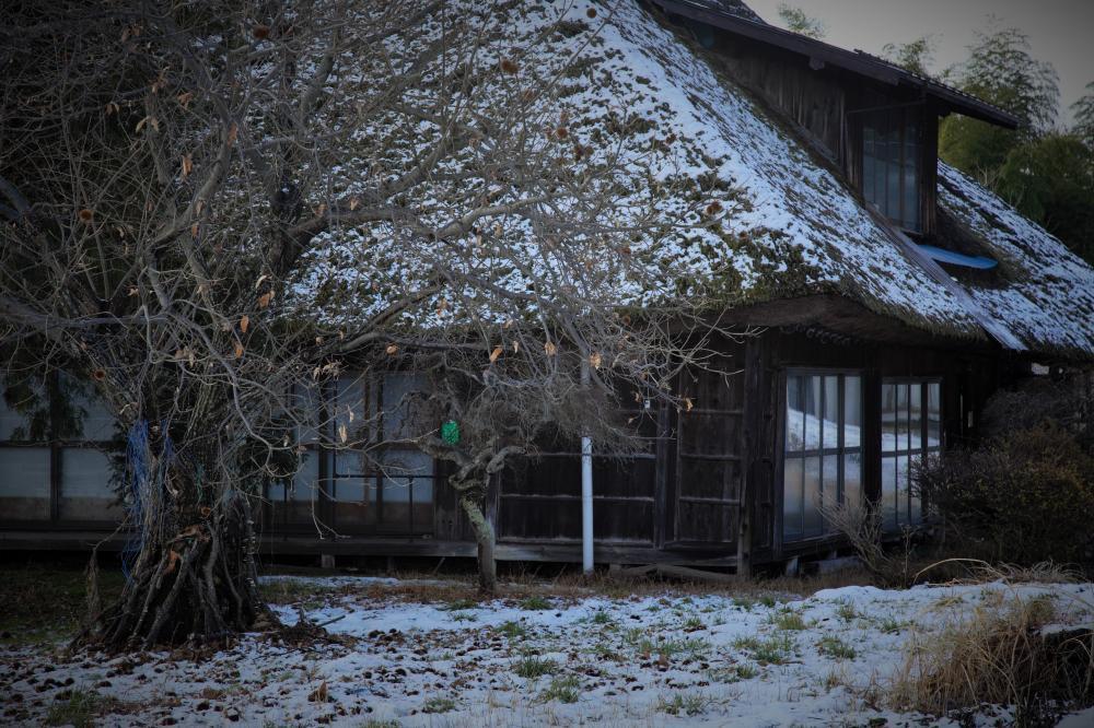 雪の降る地で