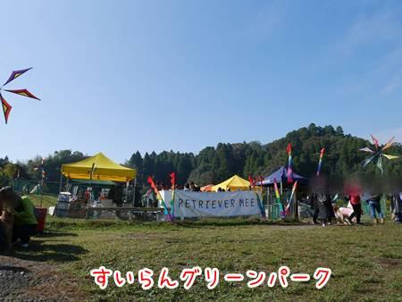 20161110-1.jpg