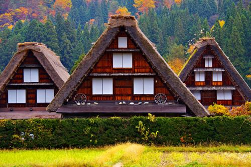 世界遺産・紅葉シーズンの白川郷の合掌造り集落