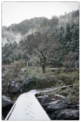 2017-2-11-snow-006.jpg
