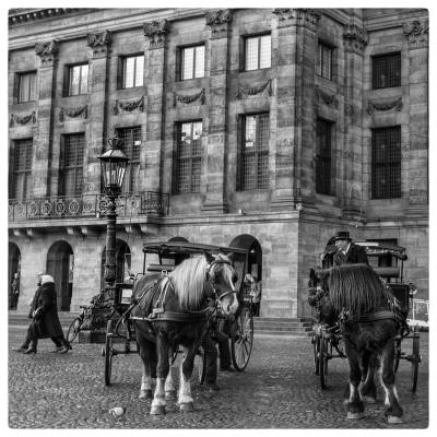 Amsterdam morning2-