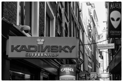 Amsterdam morning3-