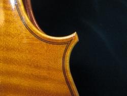 Viola H6
