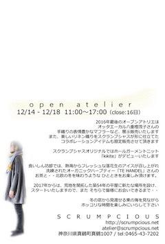 2016-2のコピー