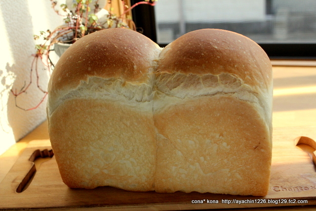 16.11.07イギリスパン1
