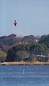 佐鳴湖から富士山霞