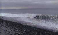 中田島砂丘太平洋波浪