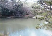 四つ池公園3