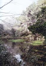 四つ池公園1