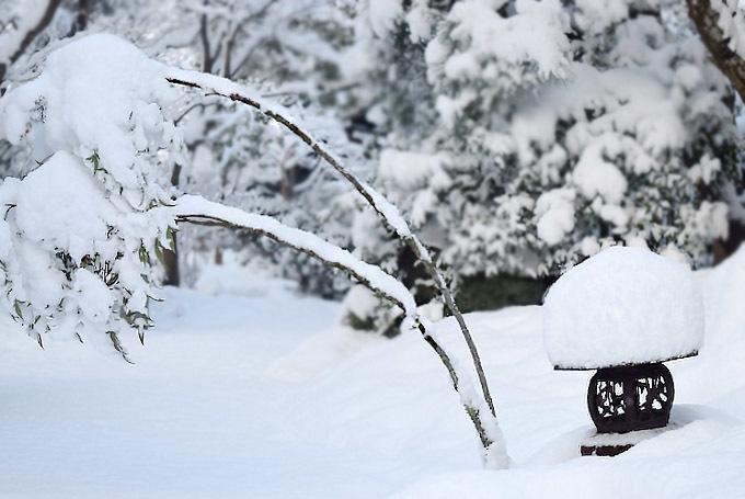 大雪のとき
