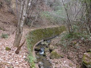 廃林道石垣