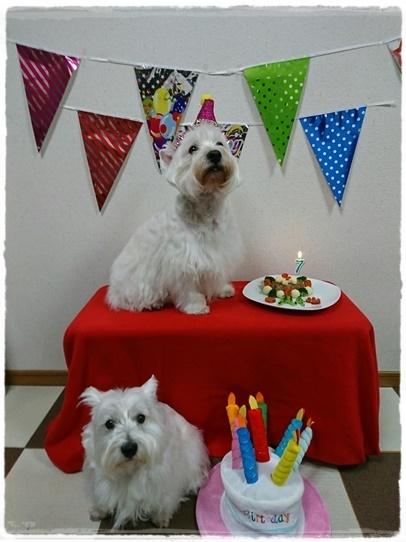 birthday5_20170111210643a60.jpg