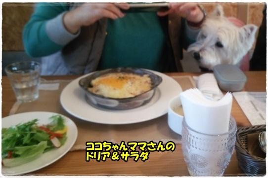 cafe7_20161115212213f87.jpg