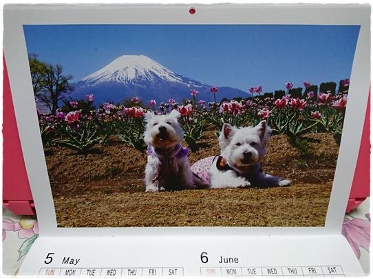 calendar3_20170114233445a96.jpg