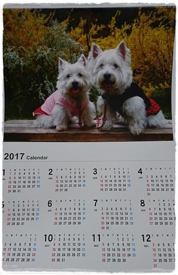 calendar7_2017011423583131e.jpg