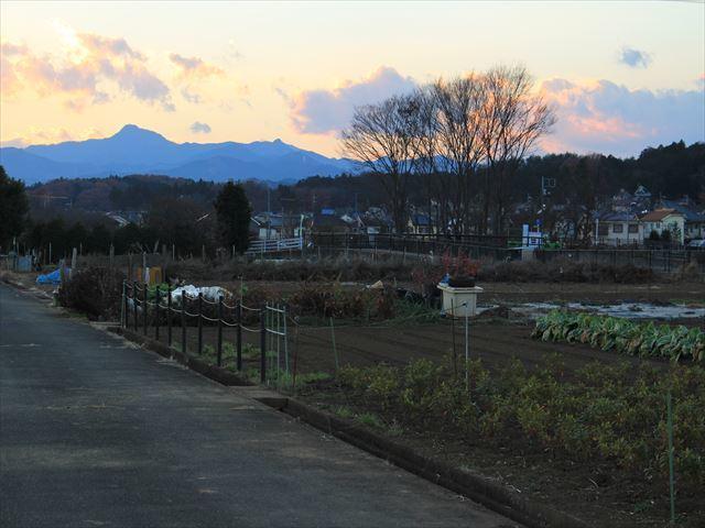 nagayama-16-12_206_R.jpg
