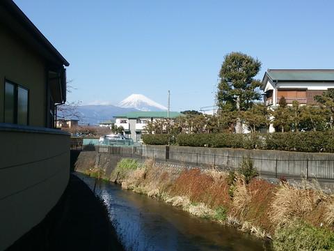 DSC_0259kaki.jpg