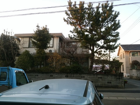 の 植木 屋 近く 西東京市の植木屋なら【本橋植木】|剪定・伐採・造園・草刈