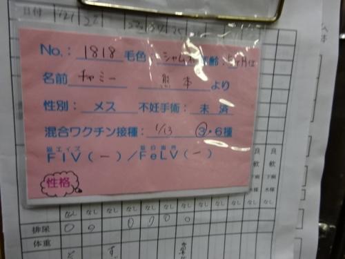 DSC02798_2017012706045848c.jpg