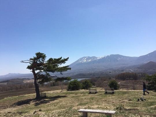 春の「愛妻の丘」
