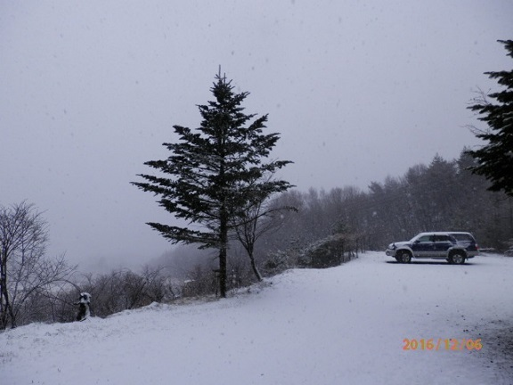 雪降りです。