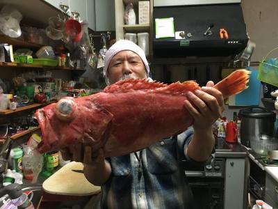 3kgオーバーのアコウダイ。自分で釣ったのではありません。冷凍のもらい物です