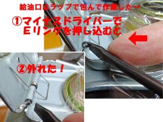 FANHTR_41_DSC04989a.jpg