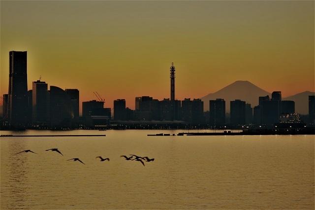 2017大黒大橋から見た横浜港の夕景(5)