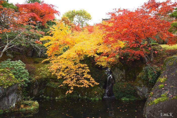 042-New-Emi-庭園