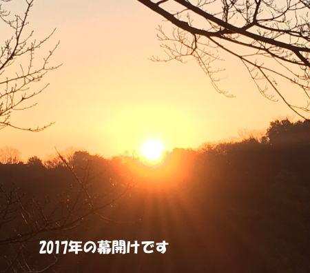 2017-01-01_4.jpg