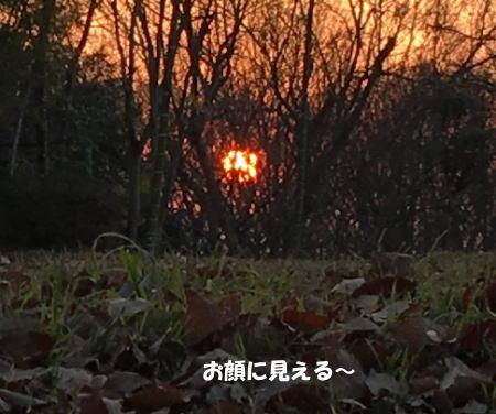 2017-01-04_2.jpg