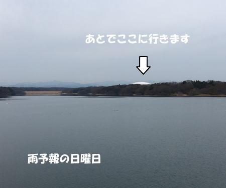 2017-01-09_2.jpg