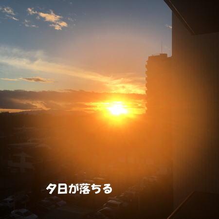 2017-01-20-4.jpg