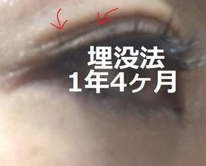 maibotu20170109.png