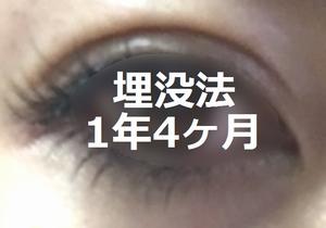 maibotu201719.png