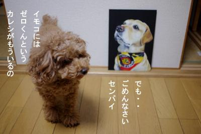 bee-musashi02.jpg