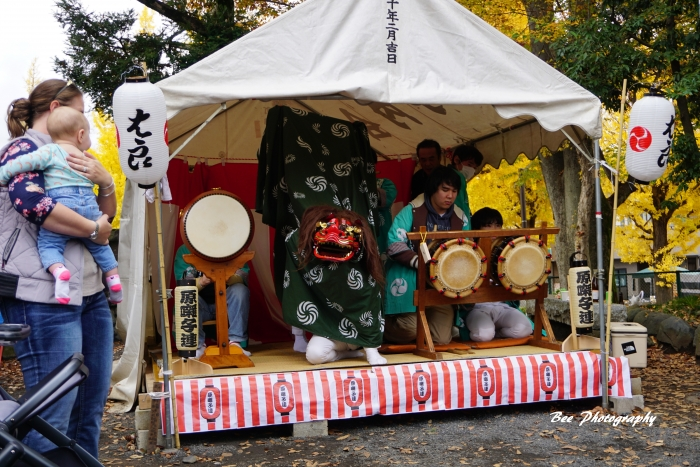 bee-いちょう祭り2985