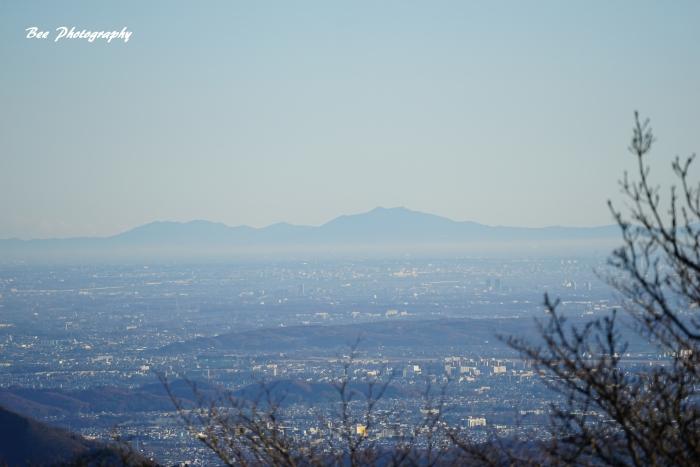 bee-陣馬山5120