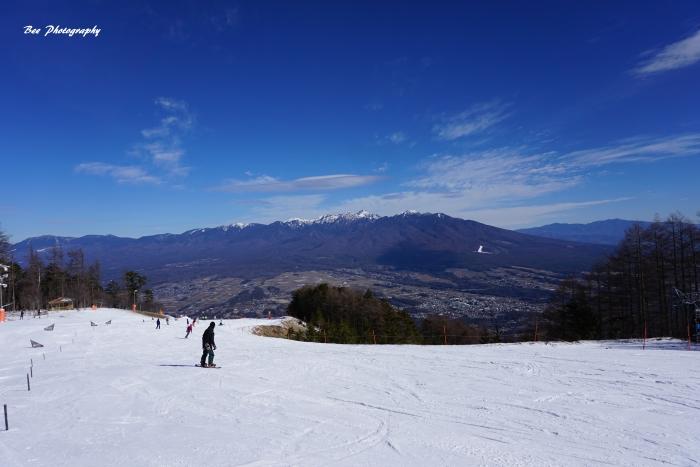 bee-富士見パノラマ6708