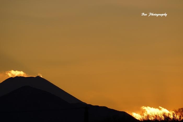 bee-富士山20170125