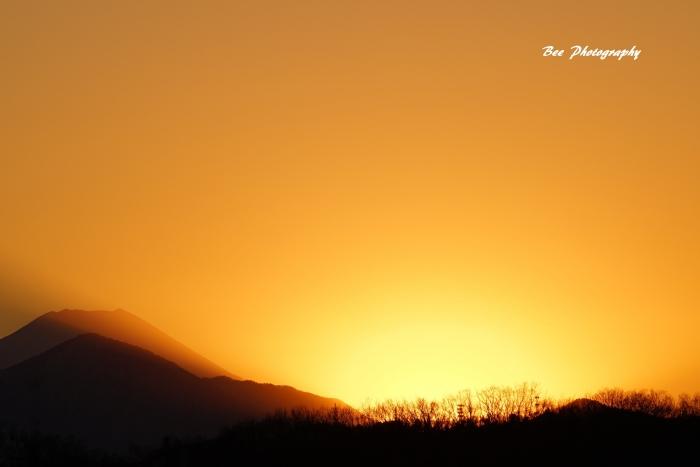 bee-富士山20170126-2