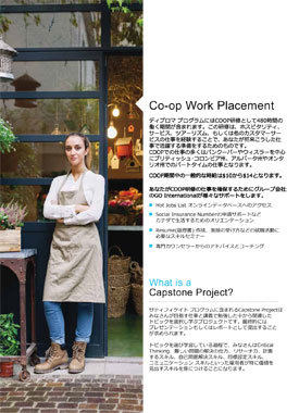 Tamwood_Careers_Brochure_2017-Japanese-Low-Res-7.jpg